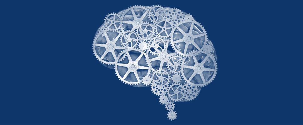 Istruzione, formazione, forma mentis: il processo di sviluppo professionale ed individuale